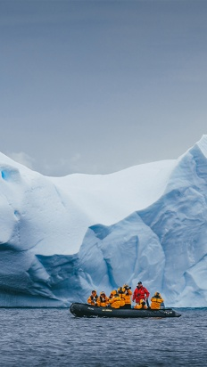 South Georgia and Antarctic Peninsula - Penguin Safari