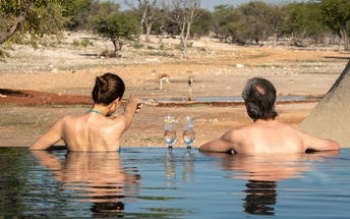 Anderssons at Ongava