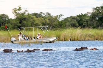 Camp Moremi Boat Safari