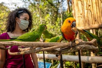 Iguassu Falls- Birdpark