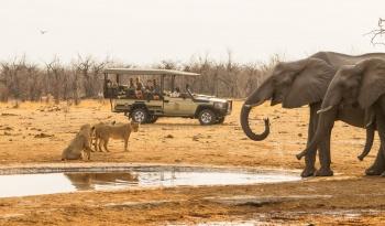 Savute Safari Lodge Game Drives